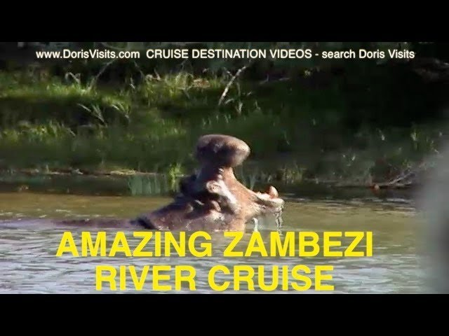 Zambezi African Queen like Sunset River Cruise one of the best ever river trips