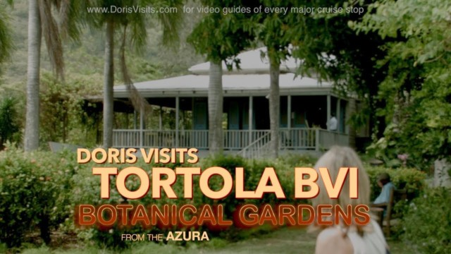 Tortola BVI – Walk to the J R O'Neal Botanical Gardens