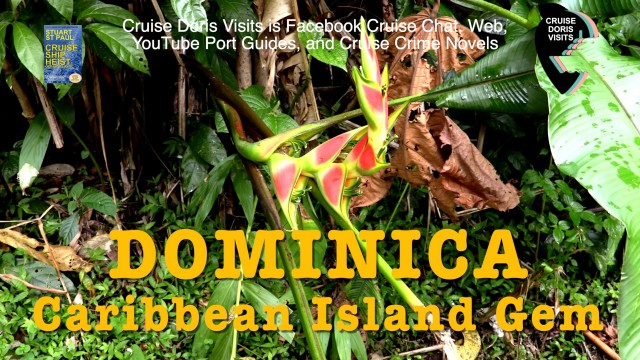 Dominica – island tour, panoramic view of Morne Bruce